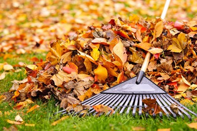 Yard Waste Pick-up will resume on Monday, April 5, 2021